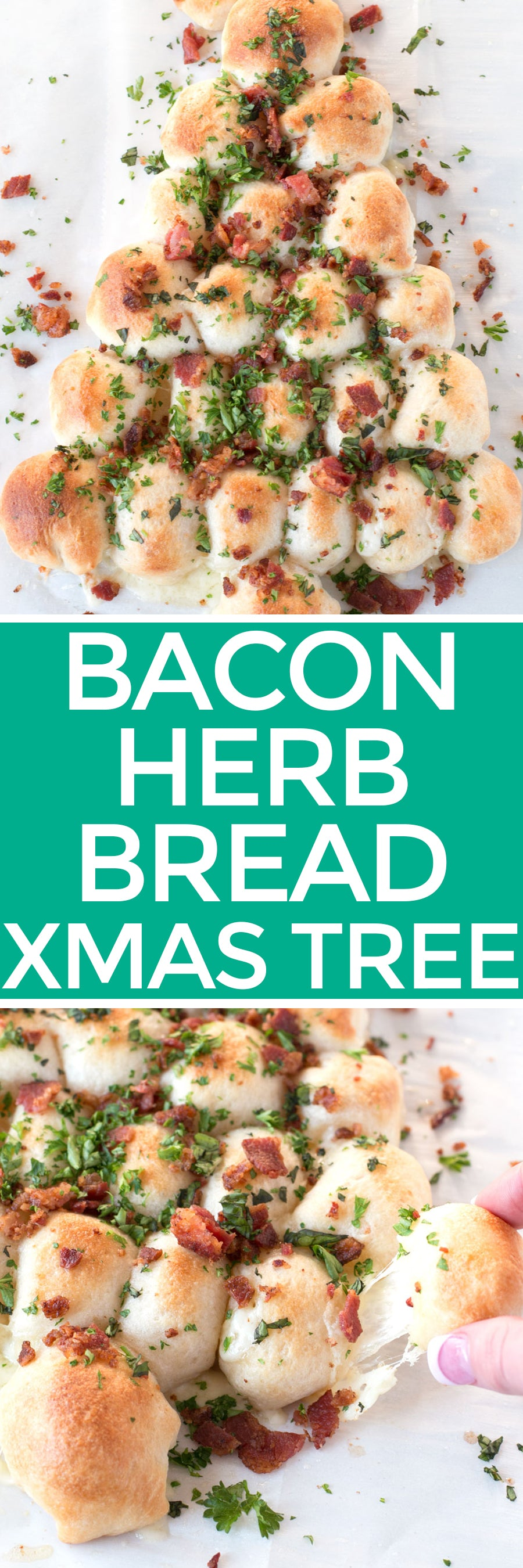 Bacon, Herb and Cheese Christmas Bread Tree | pigofthemonth.com #christmas #holiday #party #recipe