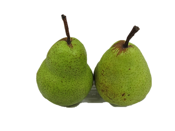 Australian Pears 2 Pieces