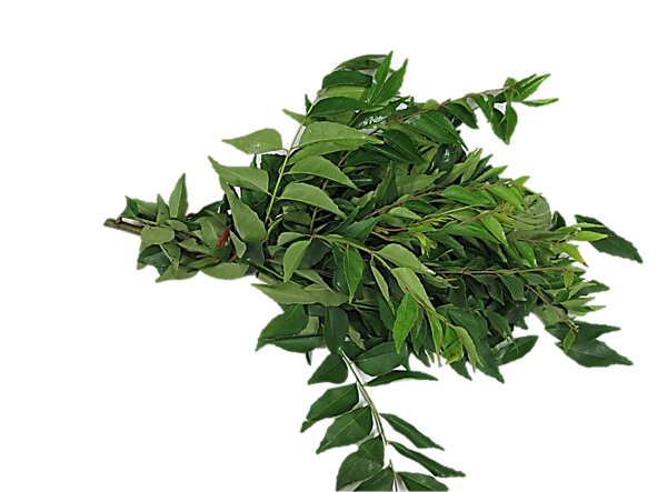 Curry Leaves 1 bunch ~ 100g