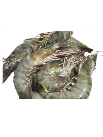 Frozen Fresh Tiger Prawns ~320g