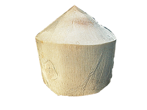 Coconut: Young Thai Coconut Drink 1 Piece