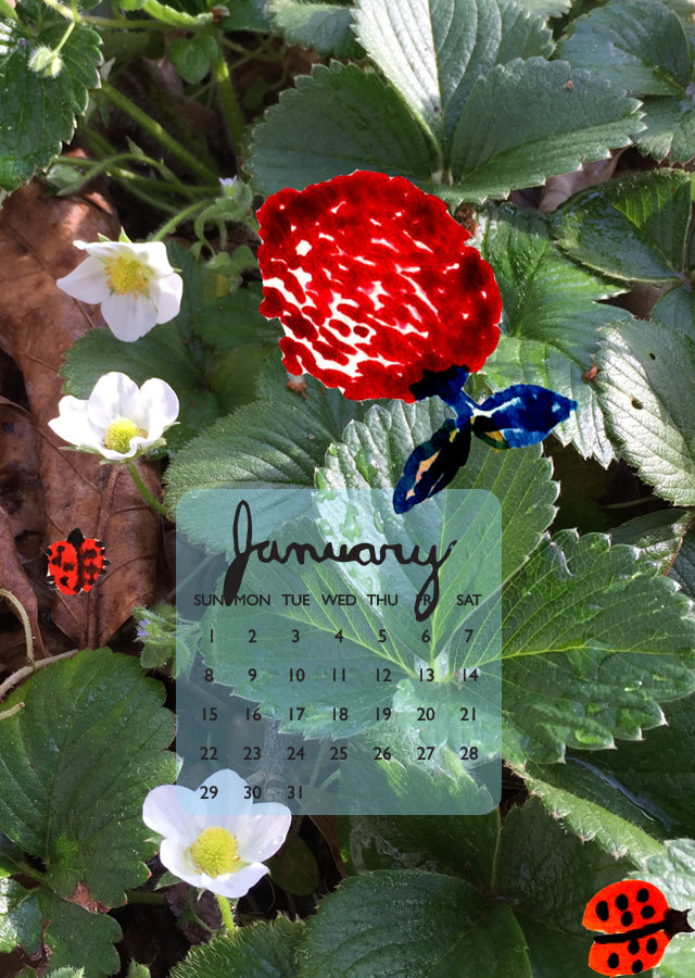 January iphone calendar