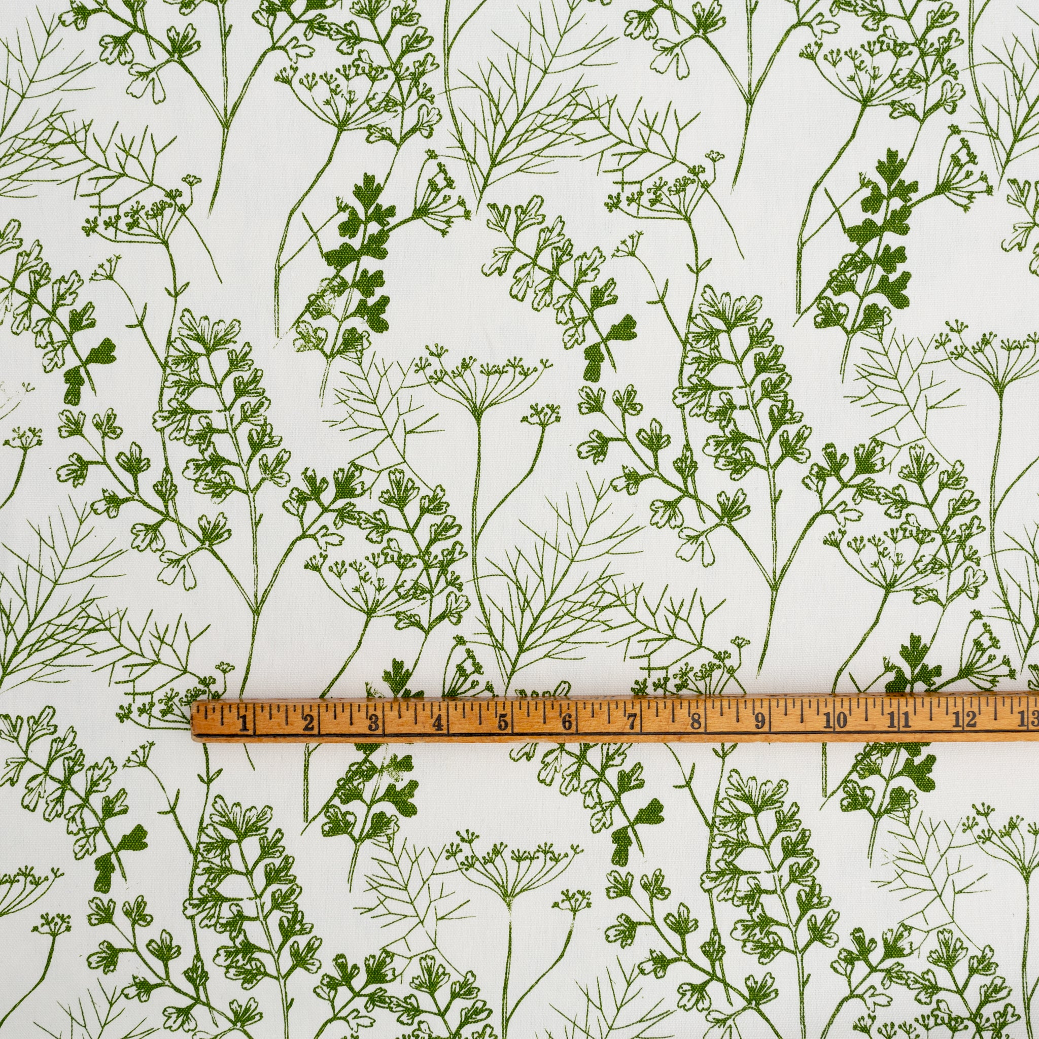 Parsley in Frond: 1/4 Yard (Light Wt)