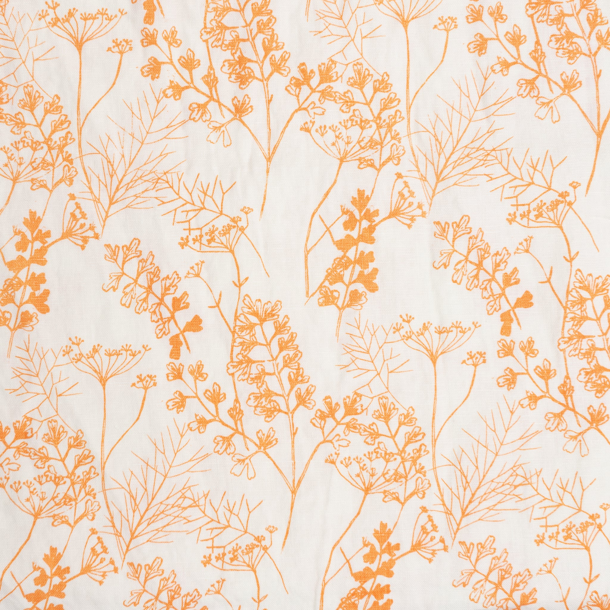 Parsley in Clementine - Linen