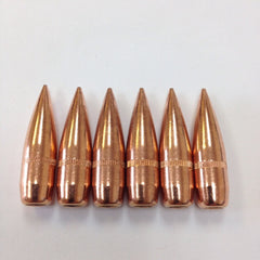 .30 Projectiles (Bullets)