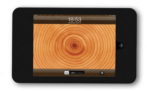 iPad Mount - Flush Mount