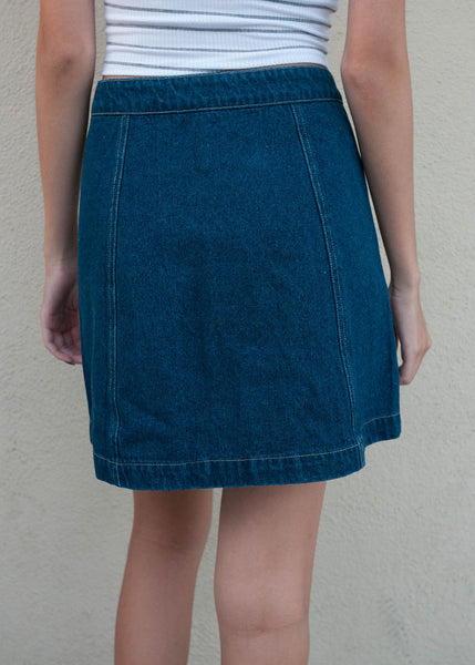 A Line Denim Skirt 3