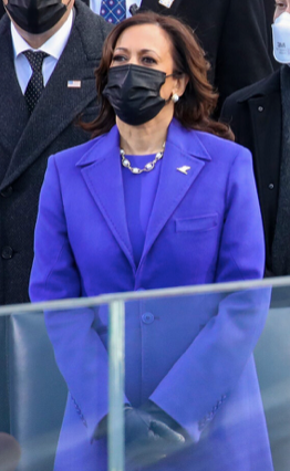 Vice President Kamala Harris is pictured wearing a purple coat and dress, pearls, black gloves, and a black mask. She is standing attentively with her hands clasped in front of her.