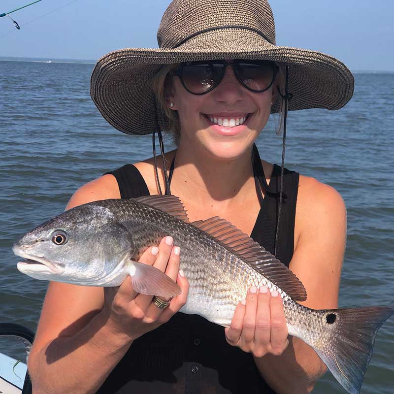AHQ INSIDER Beaufort (SC) Summer 2020 Fishing Report – Updated August 28