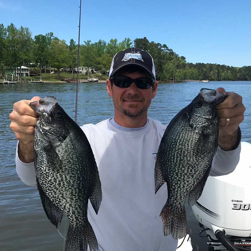 AHQ INSIDER Lake Murray (SC) Spring 2020 Fishing Report - Updated April 8