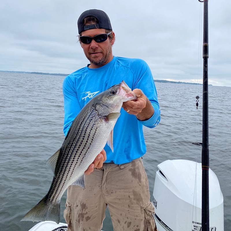 AHQ INSIDER Lake Murray (SC) Spring 2020 Fishing Report - Updated June 2