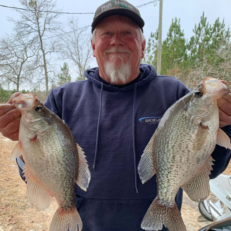 AHQ INSIDER Lake Wateree (SC) Spring 2021 Fishing Report – Updated March 10