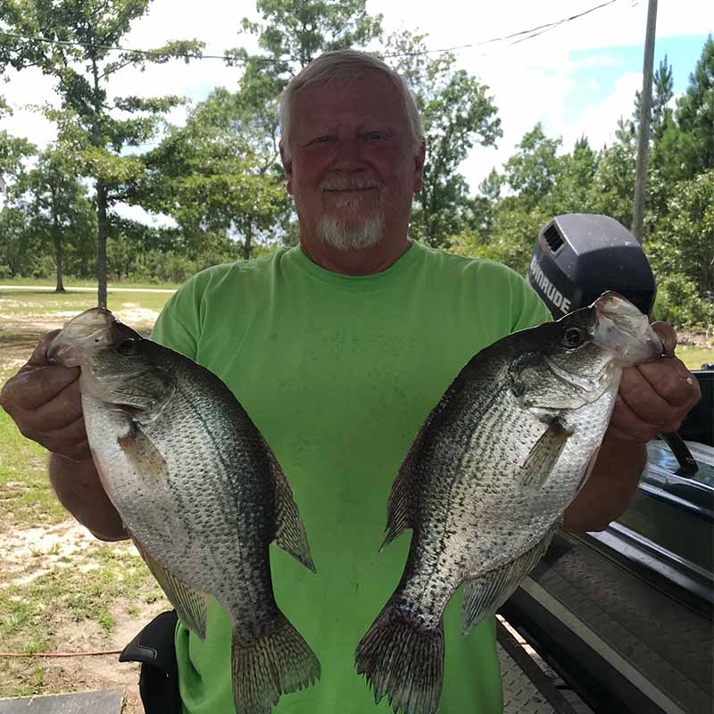 AHQ INSIDER Lake Wateree (SC) Summer Fishing Report – Updated July 29