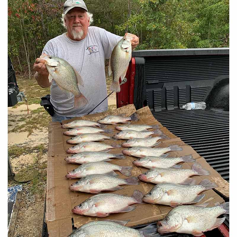 AHQ INSIDER Lake Wateree (SC) Fall Fishing Report – Updated October 9