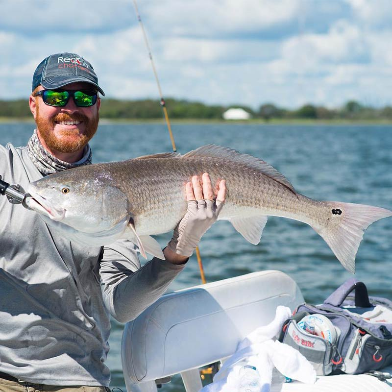 A nice redfish caught recently sight-fishing with Redfin Charters