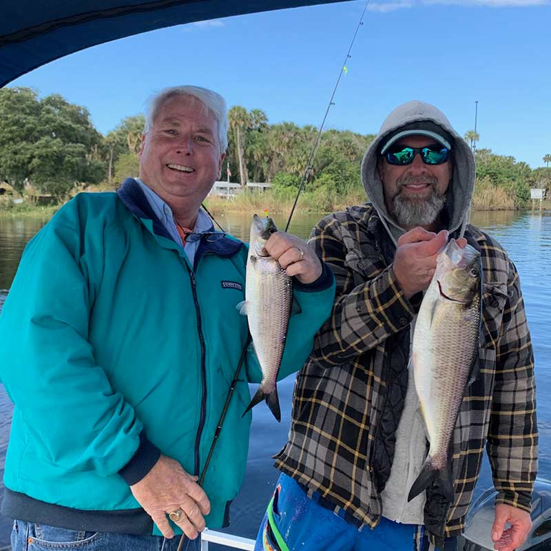 Captain Rob Bennett got an early jump on the shad run with a recent trip to Florida