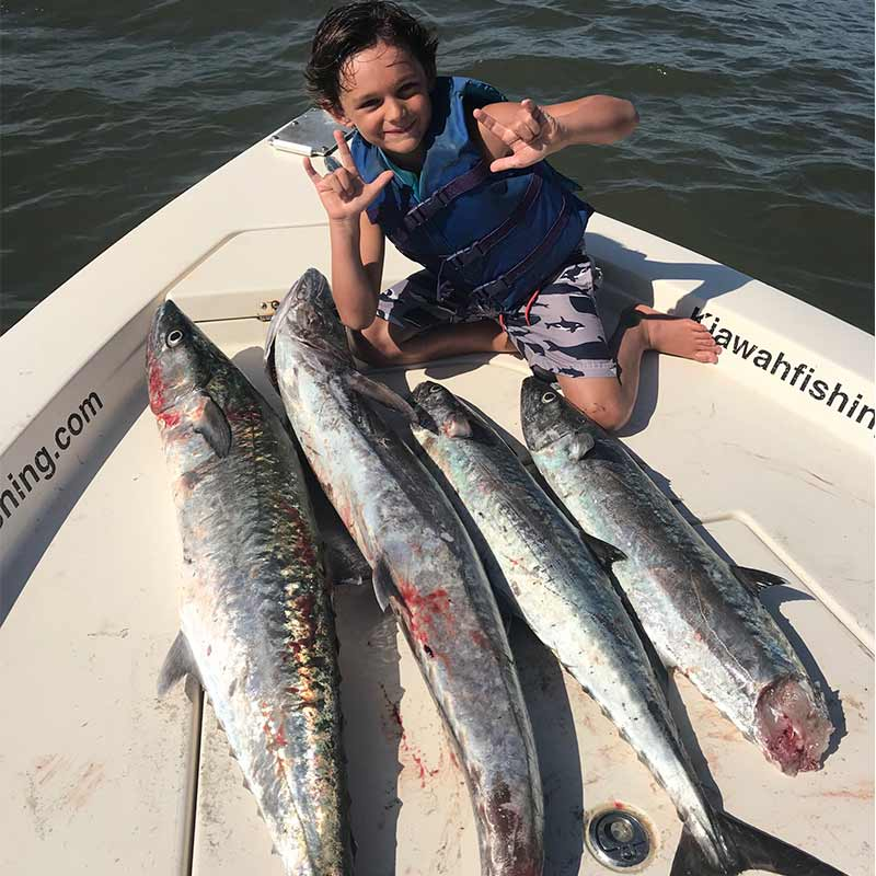 A huge day for king mackerel with Captain Rob Bennett