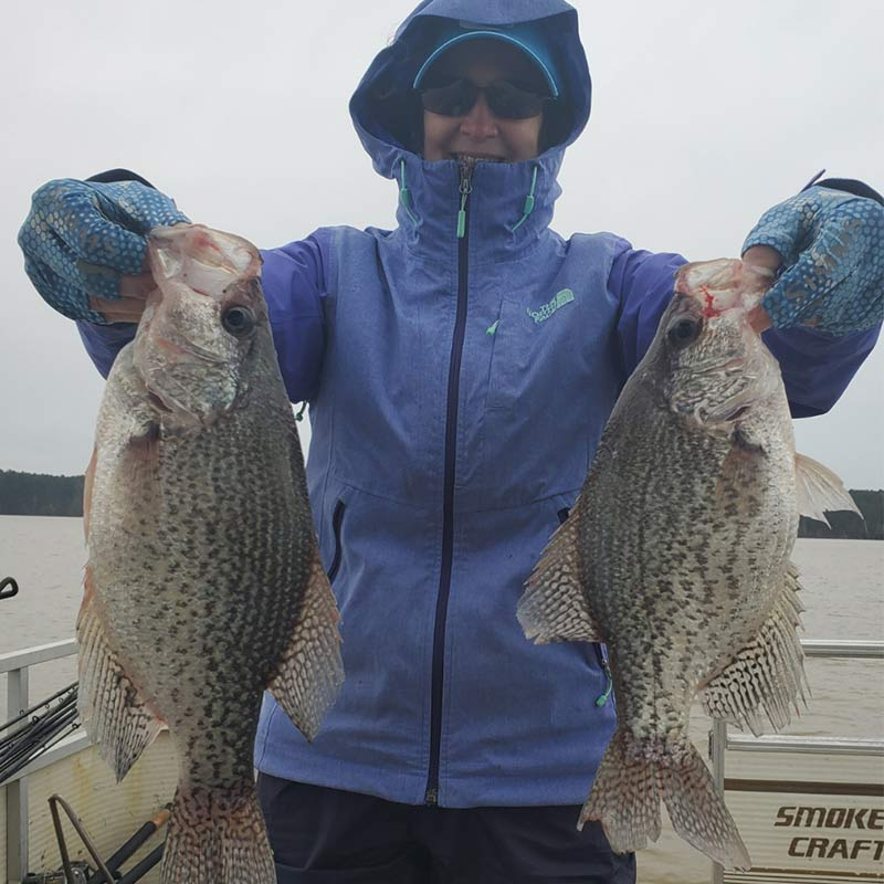 A couple of slabs caught this week with Captain Chris Simpson