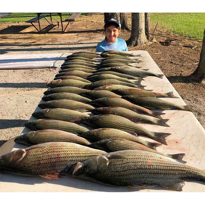 A huge catch this week with William Sasser Guide Service