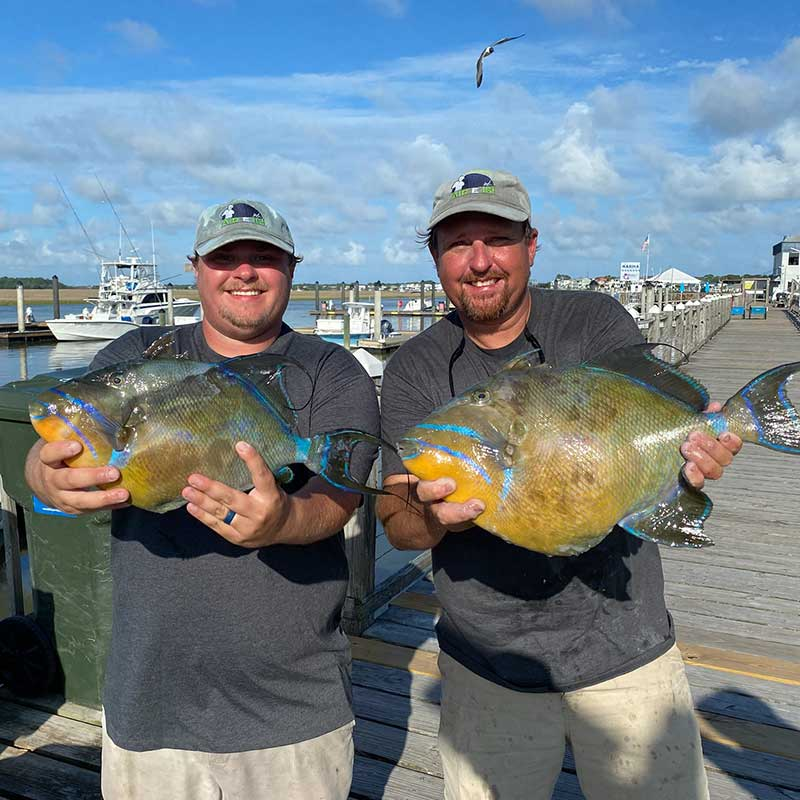 Caleb and Ron Davis with the queen triggerfish!