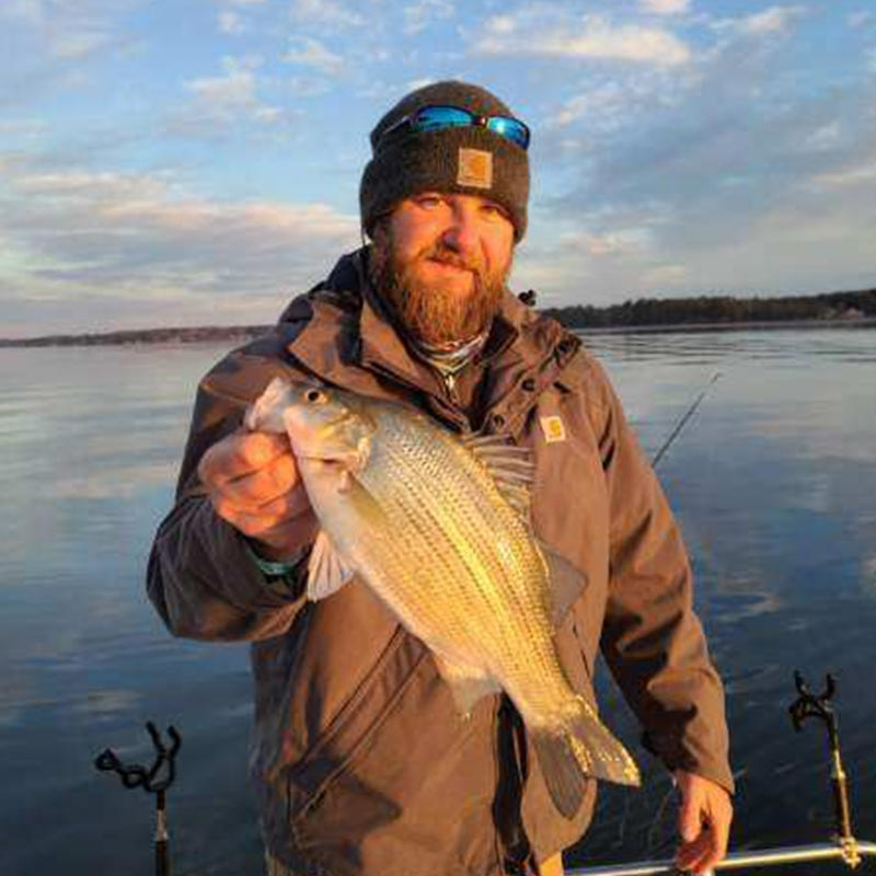 A nice white bass caught recently with Guide Daniel Skipper