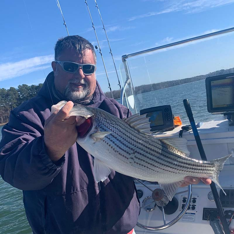 Chip Hamilton with a nice striper caught today