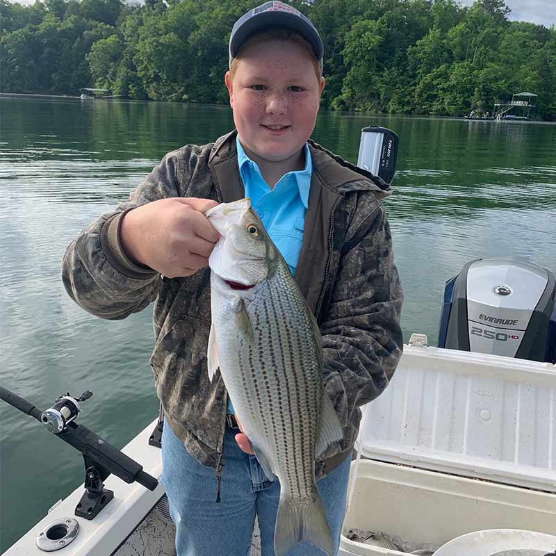 A nice hybrid caught this week with Guide Chip Hamilton