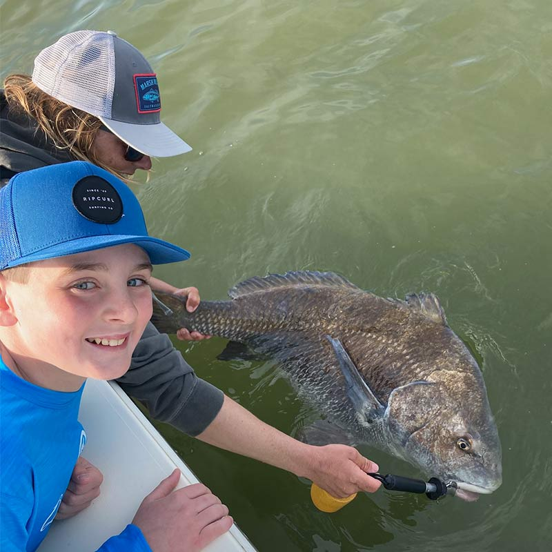 A giant black drum caught today with Captain Kai Williams