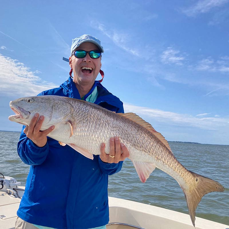 A nice red drum caught this week with Captain Kai Williams