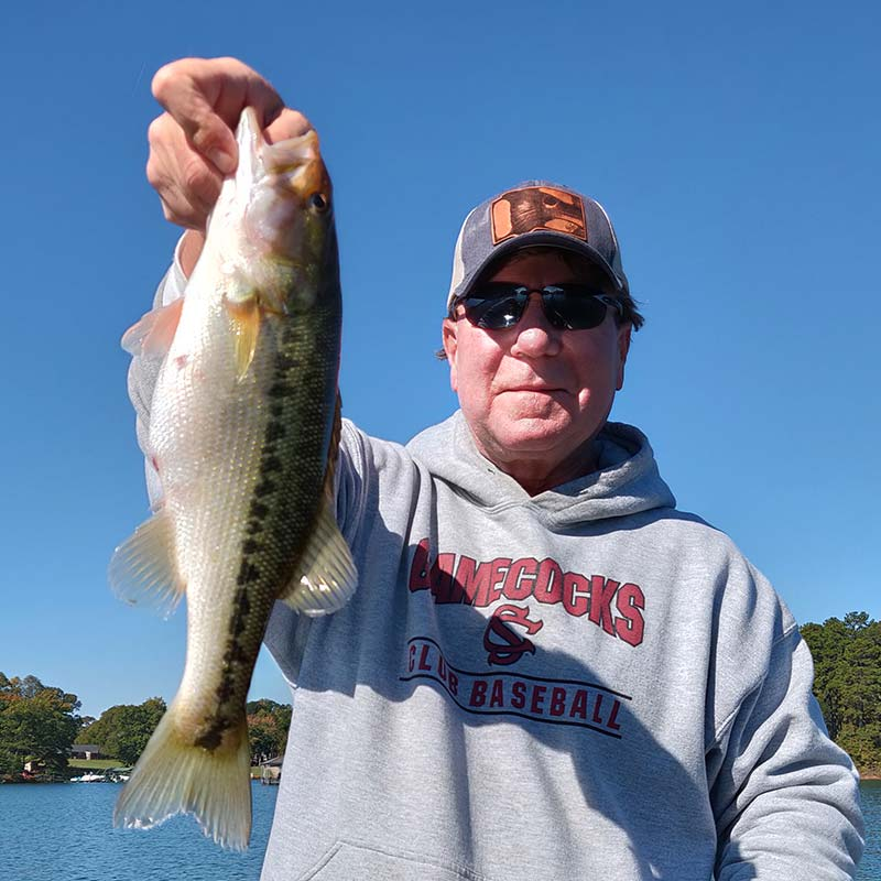 A healthy spotted bass caught on a topwater this week with Charles Townson