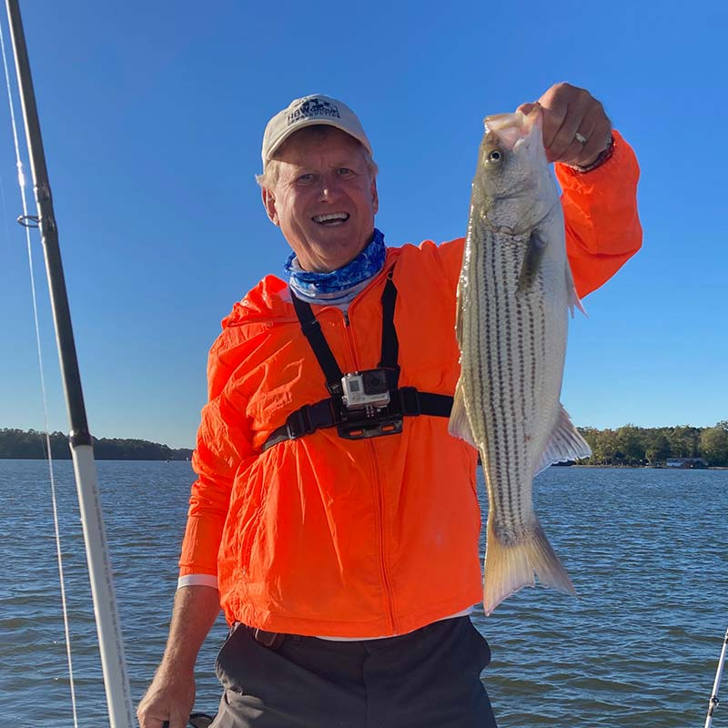 A nice Murray striper caught recently with Captain Brad Taylor
