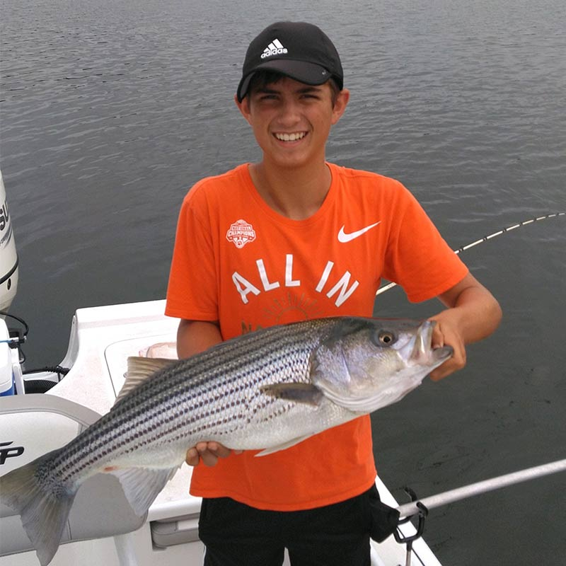 A nice striper caught this week with Guide Jerry Kotal