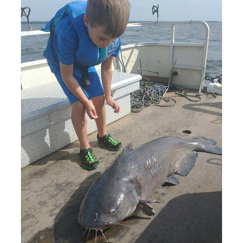 A 56-pound blue catfish caught with Guide Chris Simpson (Clarks Hill) on his Santee vacation last week