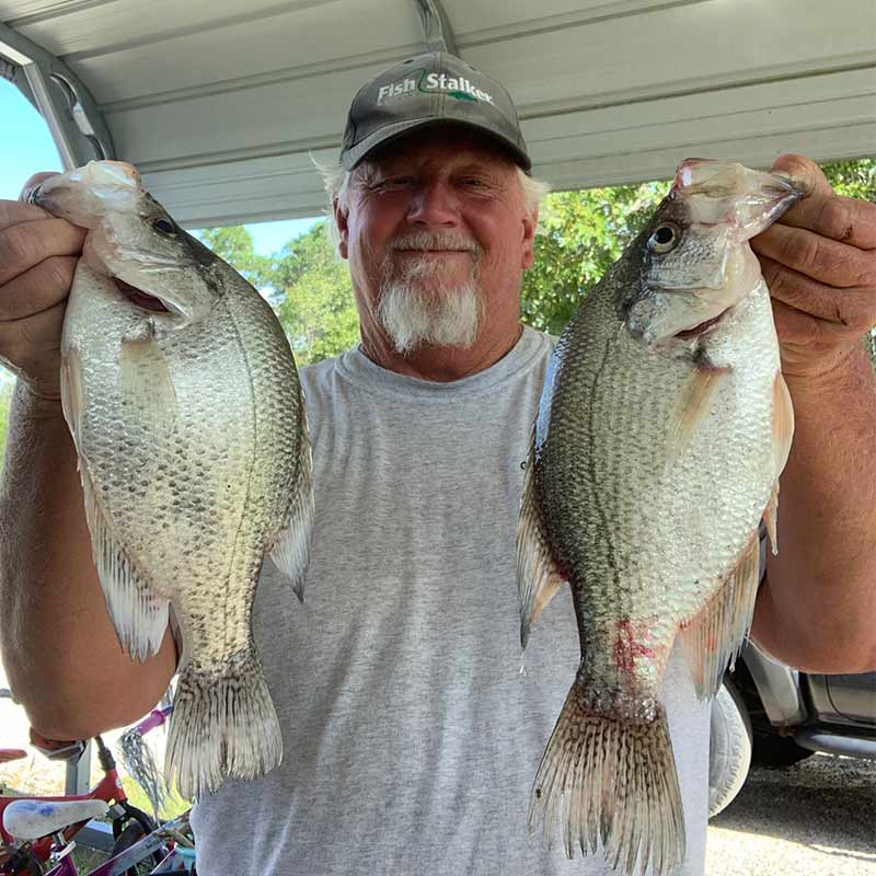 Will Hinson with a couple of nice Wateree crappie caught last week