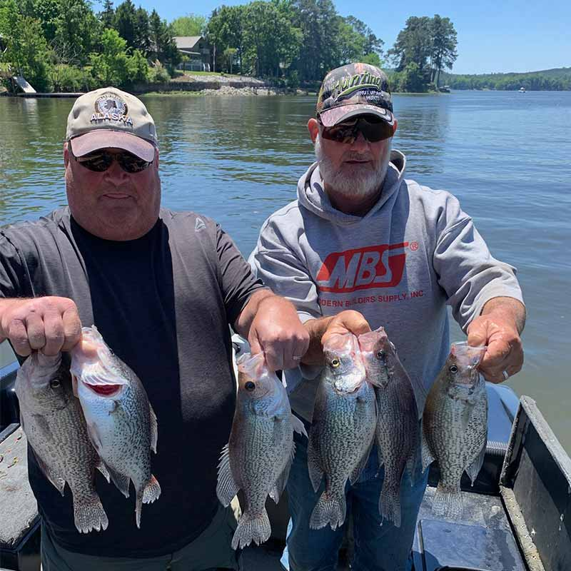 Will Hinson caught these fish with some friends over the weekend