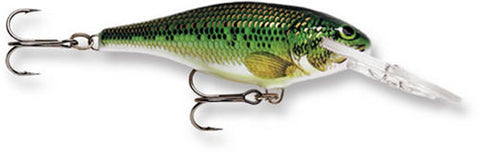 "Rapala Shad Rap (Size 06) (2.5"") - Angler's Headquarters"