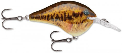 "Rapala DT Series Crankbait (2"") (6 ft) - Angler's Headquarters"