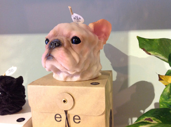Eye candle French bull painted