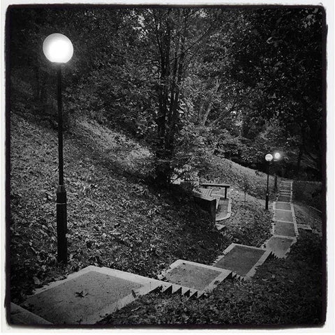 Pathway to darkness, or light? ...  the tree-lined steps at the hilltop where Linda Collins lives, just after dusk.