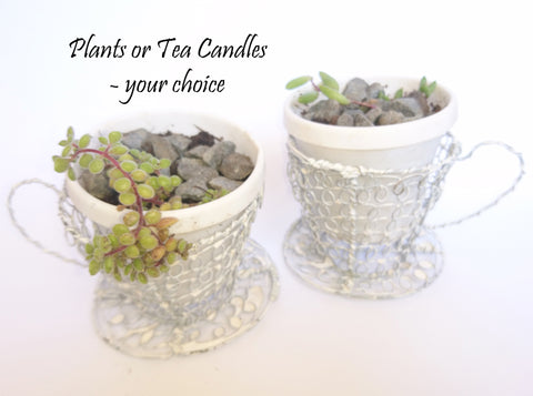 Wire Tea Cup Plant Holder, The Wireman, Plant Holder- The Wild Coast Trading Company