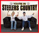 Official 12 Ft Steelers Banner