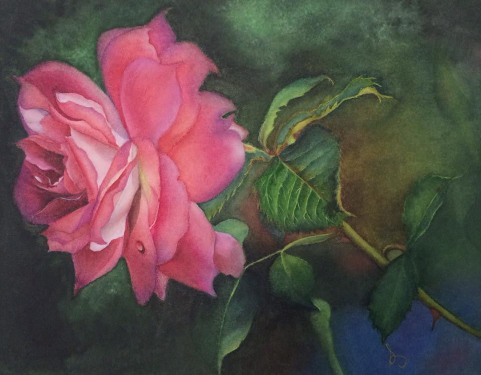 Pink Rose watercolor by Susan Ringer