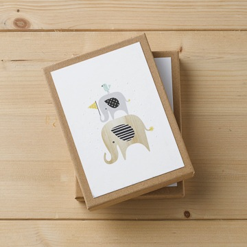 Notecard Set - Hello Little One