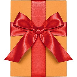 Persimmon Satin Ribbon 1""