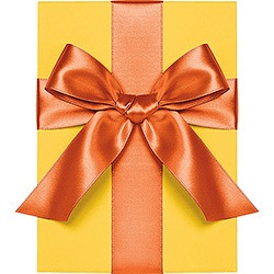 Poppy Satin Ribbon - 1""