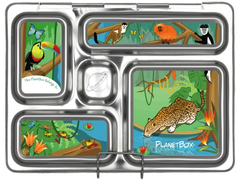 Rover Lunchbox Magnets - Rainforest