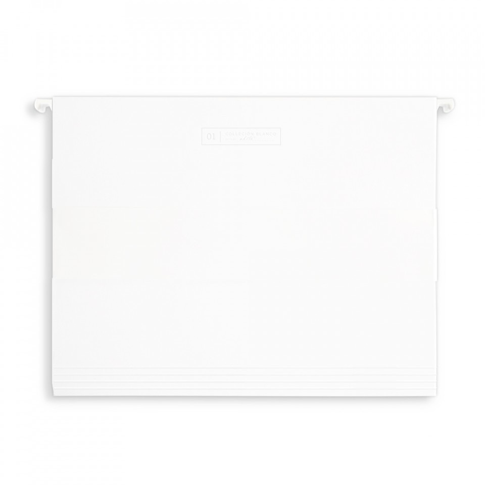 Hanging File Folders - set of 10