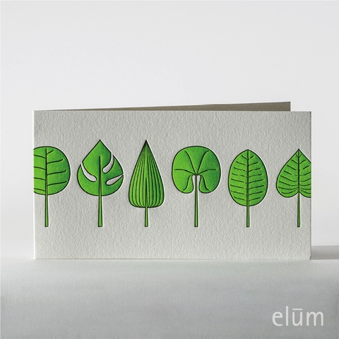 Boxed Cards - Fresh Leaves