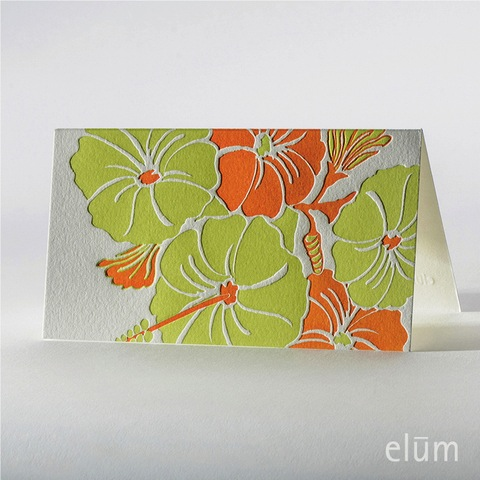 Hibiscus - Boxed Cards