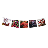 Hitched Linked Photo Clips - SILVER